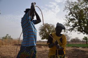 Femmes burkinabées récoltant de l'eau d'un puit